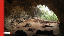 New Fossils Provide Clues To Mysterious 'Hobbit' Ancestors
