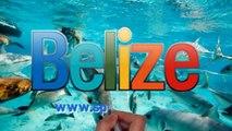 Reason #29 why we like Ambergris Caye, Belize