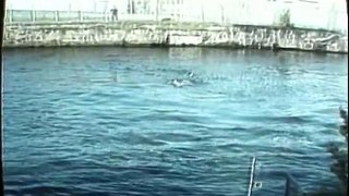 Swim for your life out of the GDR!