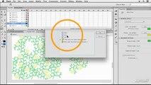 Flash CS6 101: Tools and Concepts - 19. Deco Tool Options