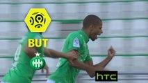 But Kévin MONNET-PAQUET (47ème) / AS Saint-Etienne - Montpellier Hérault SC - (3-1) - (ASSE-MHSC) / 2016-17