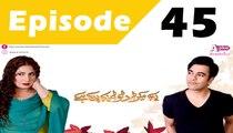 Yehi Hai Zindagi Season 2 Episode 45    Express Entertainment