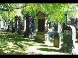 25.D1 Mannheim-City: Mazewot of the Jewish Cemetery / Grabsteine auf dem Jüdischen Friedhof