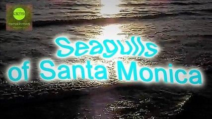 "Seagulls of Santa Monica, Short Film (Короткометражный фильм ""Чайки Санта Моники"") [2016]"