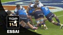 TOP 14 - Montpellier - Castres : 28-9 - Essai Paul WILLEMSE (MON) - Barrage - Saison 2015-2016