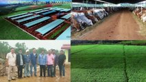 Pipeline Irrigation Project