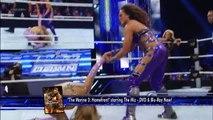 Kaitlyn & Layla vs. Tamina & Aksana- SmackDown, March 15, 2013 -