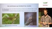 Biodiversité : déplacement de la faune et effets de la fragmentation par Maxime ZUCCA, Natureparif