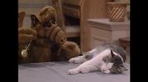 """Extrait de la série """"Alf"""""""