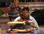 ALF : Best Of CHATS