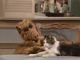Série TV ALF - Alf Hypnotise le chat (Extrait)
