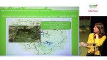 L'inventaire des routes traversées par les amphibiens par Lucile Dewulf, Natureparif