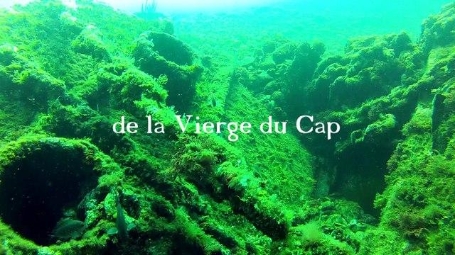 La Vierge du Cap (roman)