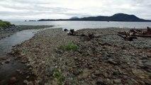 One Big Happy Biomass: Sitka, Alaska