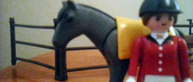 PLAYMOBIL Right Rein Stables (How to tack horse and carriage)