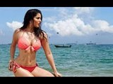 Sunny Leone Says She Would Like To Be Reborn As Sunny Leone | Bollywood News