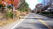 2011-11-20 八ヶ岳高原ラインその1小淵沢〜八ヶ岳牧場