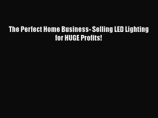Download The Perfect Home Business- Selling LED Lighting for HUGE Profits! Ebook Online