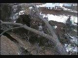 DECORAH EAGLES  3/24/2013    7:27 AM  CDT VISIT TO THE Y BRANCH