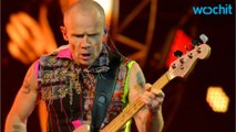 Flea Talks Red Hot Chili Peppers' New Direction