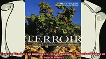 best book  Terroir The Role of Geology Climate and Culture in the Making of French Wines