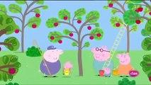 Peppa pig Castellano Temporada 3x46   La zarza de las moras MSTC