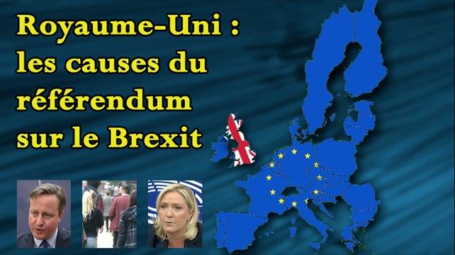 Royaume-Uni - les causes du référendum