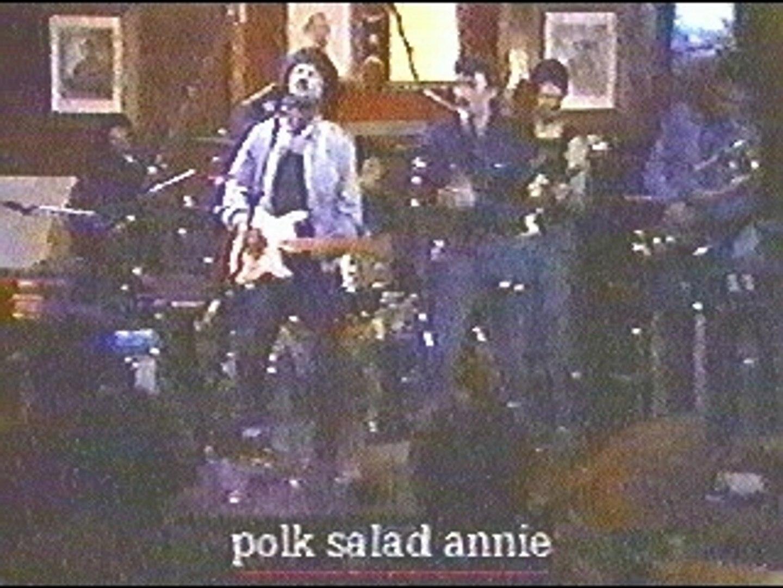 Johnny Hallyday & Tony Joe White - Polk Salad Annie