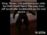 TNA Raven vs. Sting action figure promo