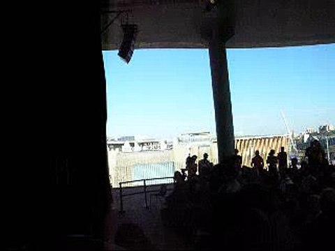 Frio Oscuro - Buitres - Expo Zaragoza 2008 - 17-07-2008