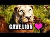 Far Cry Primal   Taming a CAVE LION - How to Tame Beasts (Best Beasts in Far Cry Primal)