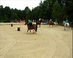 ♘ Vidéo concours Pony Games du 24 août 2014 (Les centaure).♥ ♘