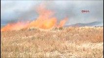 Şanlıurfa?da 50 Dönümlük Buğday Ekili Tarla Küle Döndü