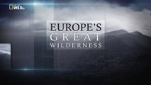 Дикие земли Европы 02. Зелёное сердце Европы (2015)