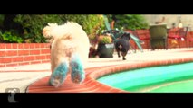 Jason Derulo -  Wiggle  feat. Snoop Dogg (Cute Dog Version)