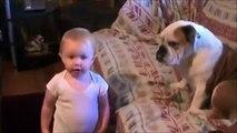 Ce bébé tente de parler au bulldog, mais regardez bien la fin de la vidéo -- MDR !