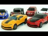 Transformers Bumblebee Stinger Carbot  Robot Car Toys 카봇 트랜스포머 범블비 스팅어 터닝메카드 에반 타나토스 자동차 장난감 변신 동영상
