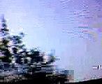 UFO  BIRDS TRACK HUMAN   ELECTROMAGNETIC FINGER PRINT ( EAGLE EYE 2  ALIEN FBI USE BIRDS TO TRACK ELECTROMAGNETIC HUMAN FINGERPRINT                          .3g2) - October 15, 2008, 02:35 AM