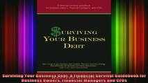 READ book  Surviving Your Business Debt A Financial Survival Guidebook for Business Owners Financial Full Free
