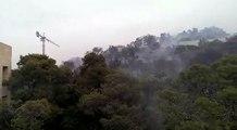Un énorme incendie ravage les forêts de Baabda