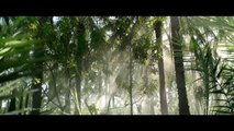 Top 2 Commercials Shot Using Red Epic Drone | Masafi Natural Water | Hartstichting TV Commercial