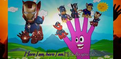 #Peppa Pig PAW Patrol Iron Man English Character Episodes New Finger Family #Nursery Rhymes Lyrics