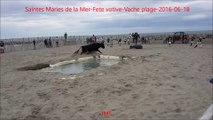 Saintes Maries de la Mer-Fete votive-Vaches plage-fete votive-2016-06-18