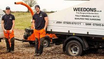 Weedons Tree Surgeons In Nottingham - Call Us 07905675171 - Tree Surgeons Nottingham