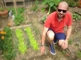 Les jardins suspendus de Vincennes ou l'art de cultiver son jardin secret et ses tomates