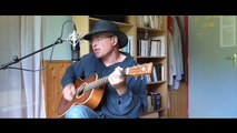 Dusty Springfield.... Son of a Preacher Man...guitare ( cover)