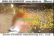 Flaking Machine/Corn Flakes Processing Machinery/Breakfast Cereal Making Machinery