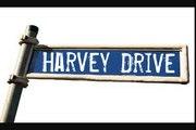 Harvey Drive BLACK DOG  Cover LED ZEPPELIN Love Ride 26 Harley-Davidson