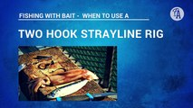 BAIT FISHING: How to put on bait 2 hook strayline rig with pilchard, squid, jack mackerel