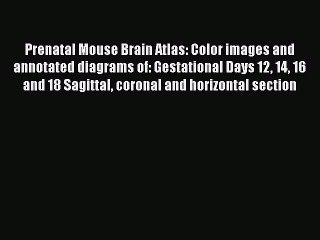 Read Prenatal Mouse Brain Atlas: Color images and annotated diagrams of: Gestational Days 12